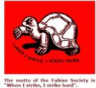 fabian-society-turtle