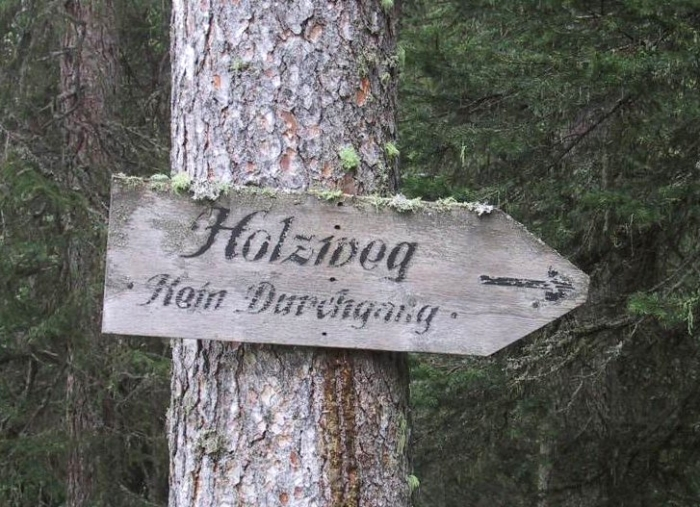 holzweg-5